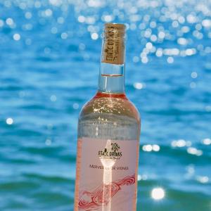 picture-rose-grenache-merveille-de-vignes