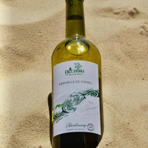 chardonnay-merveille-de-vignes