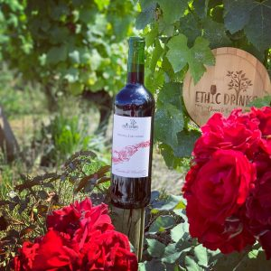 photo-monastrell-merlot-merveille-de-vignes