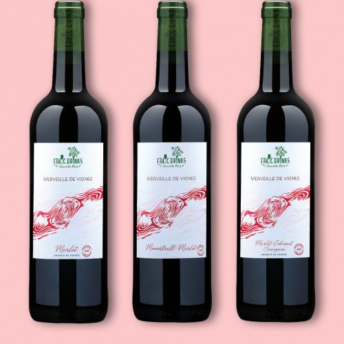 coffret-découverte-vins-rouges