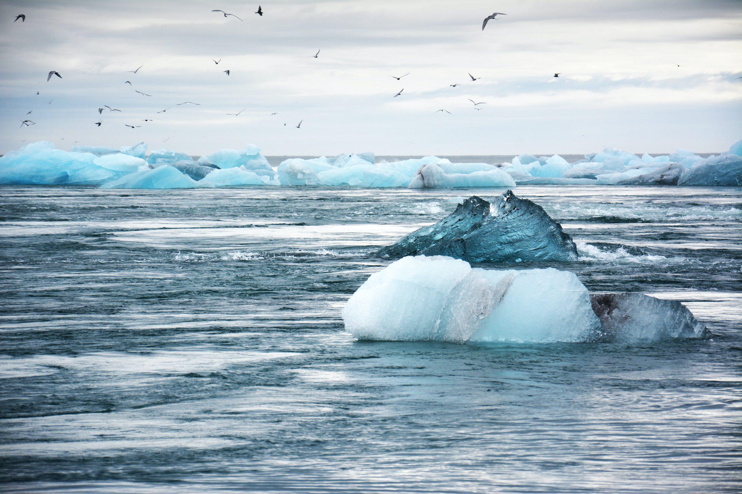 Réchauffement climatique - Fonde des glaces