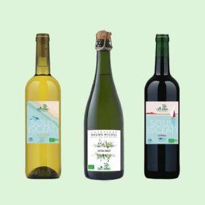Coffret Champagne Premier Cru - Vin Bio - Champagne Bio, 0 Sulfite - Ethicdrinks