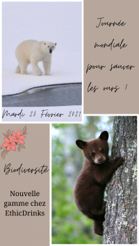 Blanc Simple Vertical Votre Story (2)